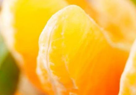 The History of the Clementine