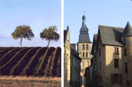 Wines from the South-West - Saint Sardos