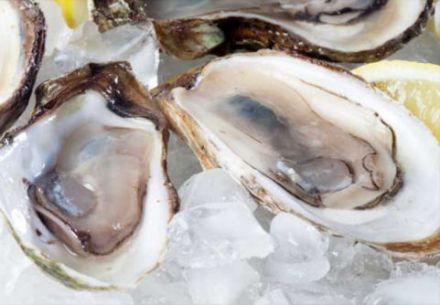 Malpeque and other PEI oysters