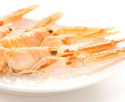 Langoustine, scampi or Dublin Bay Prawn