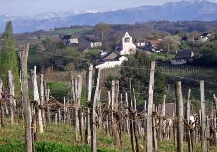 Wines from the South-West - Jurançon 2