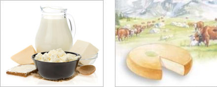 Cheeses and other dairy products