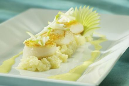 Scallops with Saffron Sauce and Granny Smith Apple
