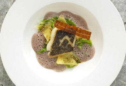 Wels Catfish Fillet with Krautfleckerln (cabbage and noodles) and red wine mustard sauce