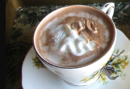Viennese-Style Hot Chocolate
