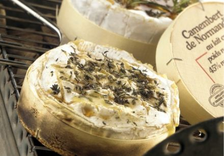 Normandy Camembert Cooked in Its Box