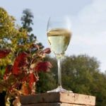 Flavours of Champagne Ardenne 2